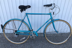 Schwinn World Tourist 150